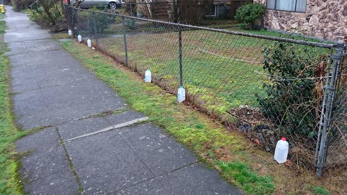 jugs_of_water_Seattle.jpg